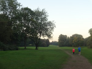 Walk in a large urban park