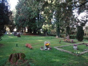 Area with some more recent burials